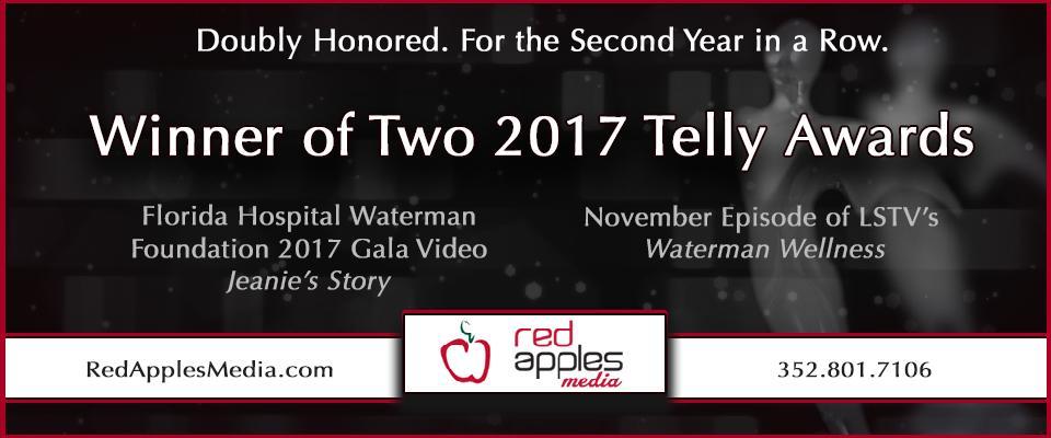 Telly_Award_2017